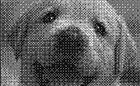 パンチングメタルで表現した犬